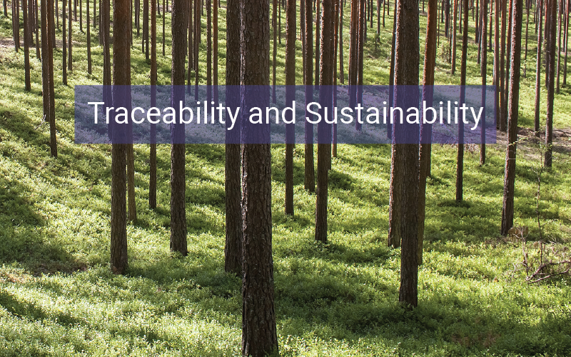 Traceability and Sustainability in the Biomass Supply Chain