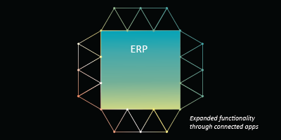 Could your ERP deliver a CTRM solution?